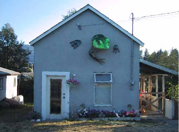 Picture:  The house with the original frog.