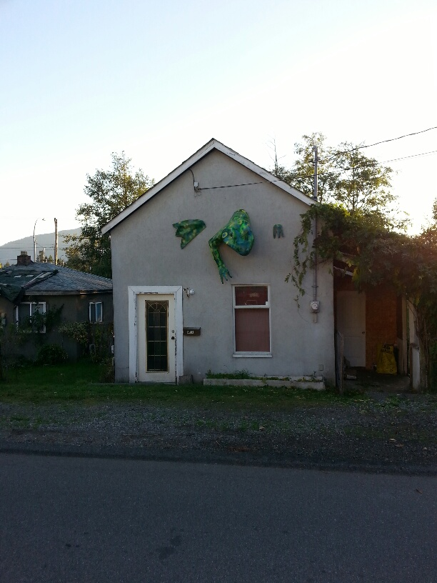 Picture:  our house with its new frog.