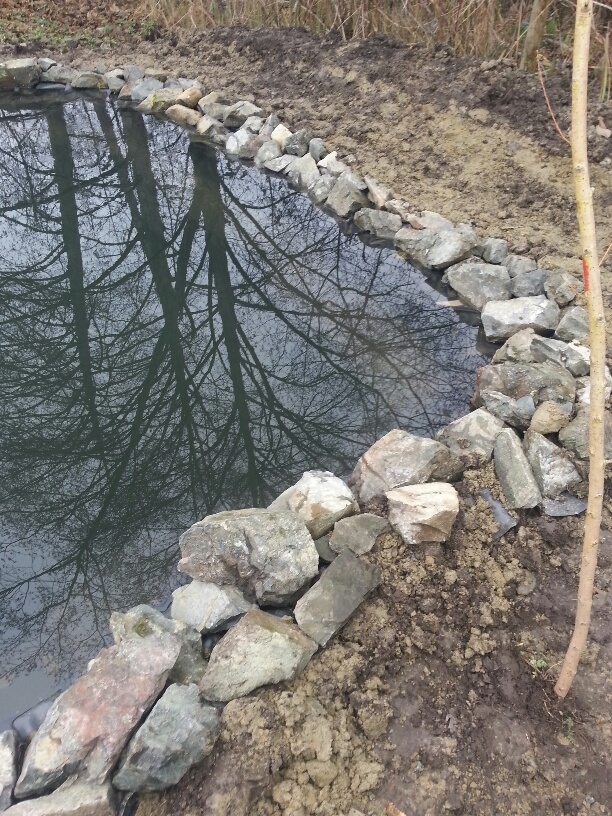 Picture:  the edge of our new pool.  Wonderful the way the liner disappears.